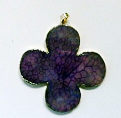 purple Clover 1